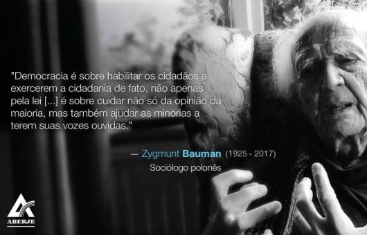 rip-bauman_destaque-site